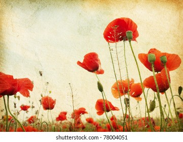Paper Poppies Images, Stock Photos & Vectors | Shutterstock