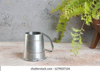 Vintage pewter cup and green plant in copper vintage flower pot on a concrete background. Copy space for text.