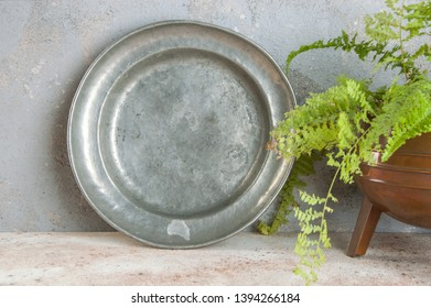 Vintage pewter plate and green plant on a concrete background. Copy space for text.