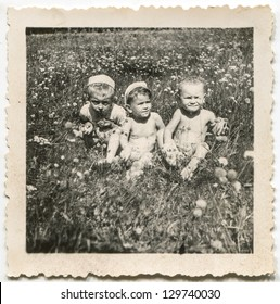 Vintage photo of babies playing on meadow, circa 1950