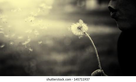 Vintage photo of dandelion blower woman