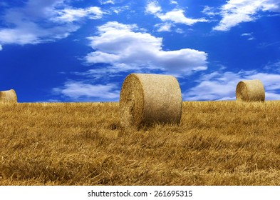 Vintage photo of hay-roll on field after harvest