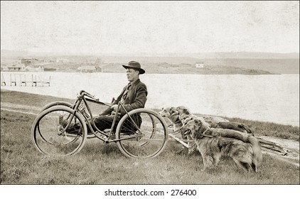 Vintage Photo of a Recumbent Bike Towing Dogs