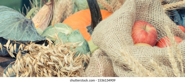 Vintage photo, Seasonal harvesting decorations made of ripe apple, pumpkin, ears of wheat or rye