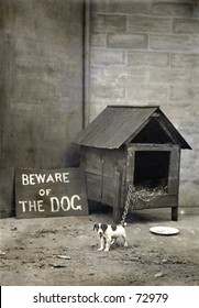 Vintage photo of a small dog with humorous sign