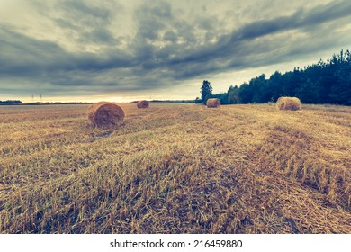 vintage photo of stubble field with straw and straw bales