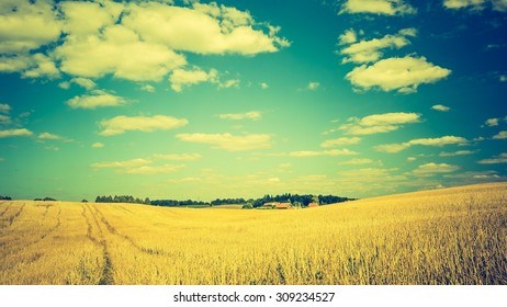 Vintage photo of stubble field under blue sky with white clouds. Summertime landscape. Polish countryside.