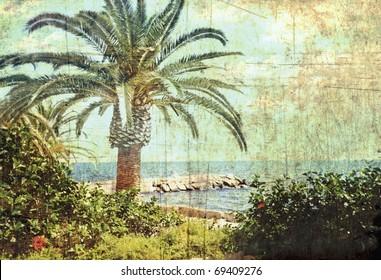 Vintage postcard. Tropical scene. Sea coast of Cyprus.