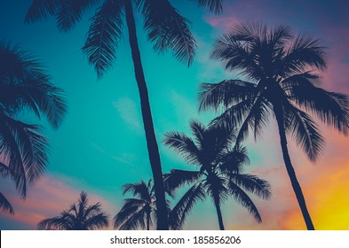 Vintage Retro Filtered Hawaii Palm Trees At Sunset