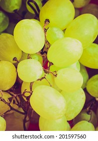 Vintage retro looking Grape of vitis picture