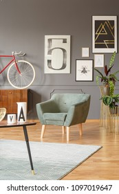 Vintage room interior with a comfortable green armchair, red bicycle, plants on golden stands, carpet on a wooden floor and a sketch of a beetle and other posters on a gray wall