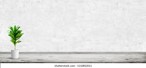 Vintage room interior with plant in pot over concrete wall and wood floor background. Wide panorama image