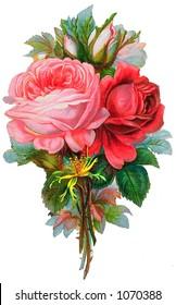 A vintage rose bouquet illustration (circa 1881)