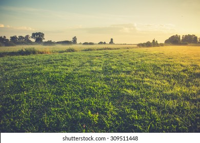 Vintage rural landscape. field and grass