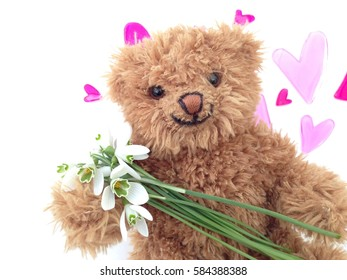 Vintage smiling teddy bear, close up against white background with snow drop flowers, against a white background with pink hearts