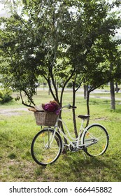 Vintage style bicycle with fresh flowers and bread in basket in park,peony flowers, art, filters, noise added, concept, collage, dirty, fine film noise added