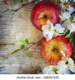 Vintage style, fresh apple flowers, spring flowers