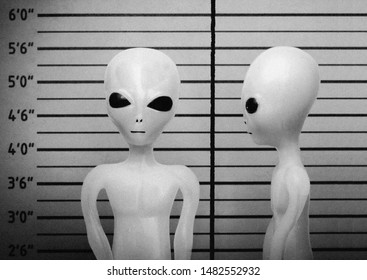 Vintage style grainy black and white mugshot of a visitor from another planet, grey alien, extra terrestrial