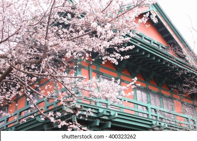 VIntage style house in front of flower tree