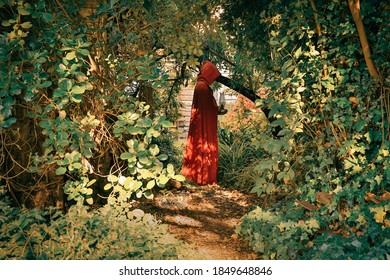 Vintage style image of young woman in red cape carrying lantern in secret garden.