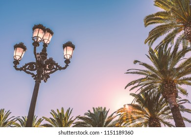 vintage style lamp post with four lights made in cast iron metal and palm trees in eveing sunshine in Ayamonte, Andalucia, Spain on a summer evening with copy space