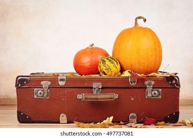 Vintage suitcase and pumpkins