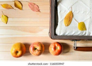 Vintage suitecase with knitted sweater, ripe apples and colorful leaves on the wooden background. Autumn trip. Harvest. Space for text