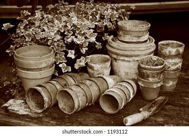 vintage terracotta pots