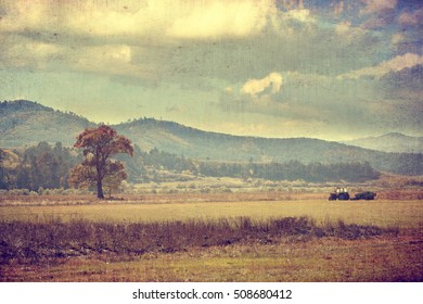 vintage textured agricultural landscape with alone tree and tractor in the autumn fields
