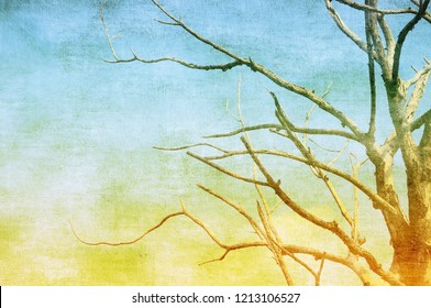 Vintage textured bare tree in sepia and blue tones. Nature background.