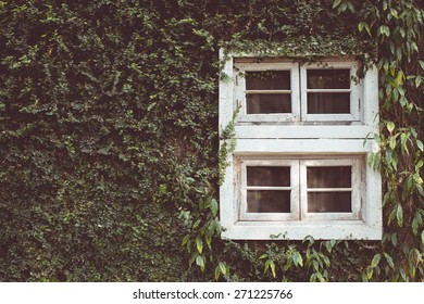 Vintage tone of Old vintage wooden window on the wall
