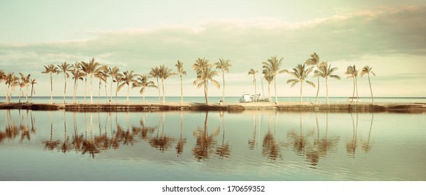 Vintage Tropical Hawaiian beach with coconut palm trees, morning blue sky and turquoise waters - panoramic view