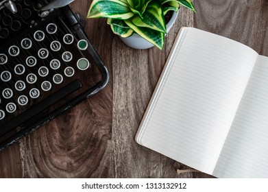 vintage typewriter, potted plant and open diary on rustic wooden desk
