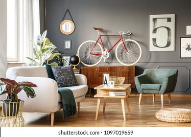 Vintage unique living room interior with white comfortable sofa with cushions and blanket, green armchair, cupboard, small table, red bicycle and a poster with number five on gray wall