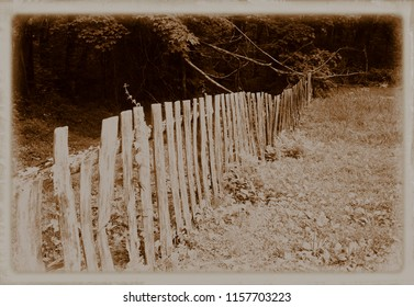 Vintage view of an old wooden fence