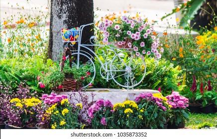 Vintage white bike flowerpot in home flowers garden on summer.