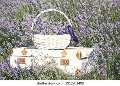 Vintage white suitcase and a white basket with lavender flo in a lavender field.
