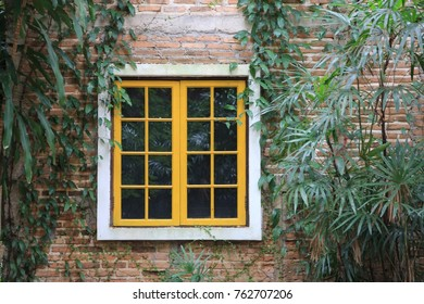 the vintage window