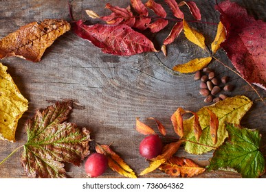 Vintage wooden background with dried autumn leaves, gifts of autumn and copy space from above