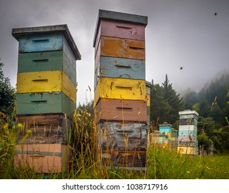 Vintage Wooden Beehives in various colors in Mountainious Countryside with Bees Swarming around