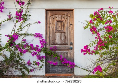 Vintage wooden door framed by climbing flowers/bougainvillea trellis plant growing on the facade of a house