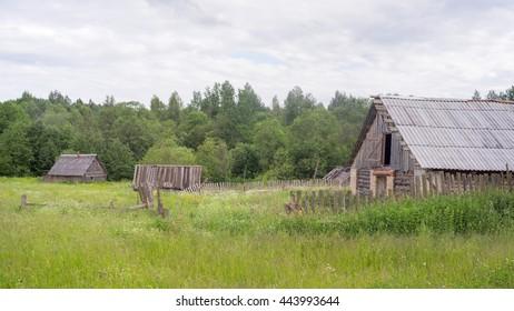 Vintage wooden houses on blossomin meadow. Verkhnee Zaozerye village, Novgorodskaya region, Russia.