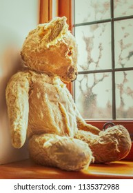 vintage worn out golden brown teddy bear sitting on a window sill looking out of a lead lined window
