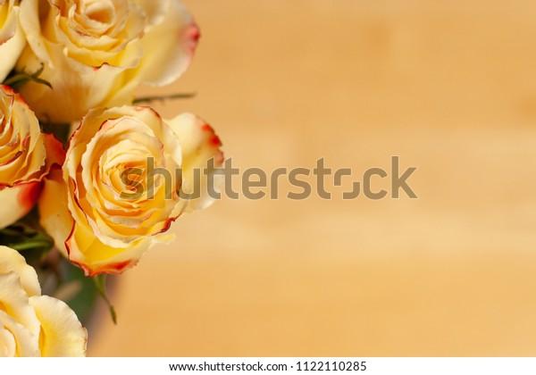 vintage yellow rose background