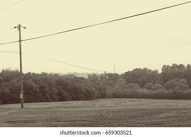 Farmland Trees Power Lines Stock Photo (Edit Now) 659304724