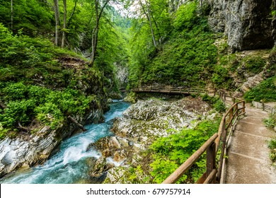 Vintgar gorge, beauty of nature, with river Radovna flowing through it, near Bled, Slovenia