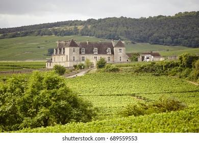 Vinyear of Bourgogne Clos Veugeot