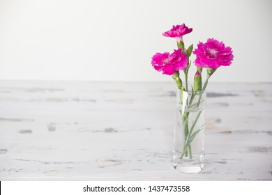 Violent flowers on white wooden background. Free copy space.