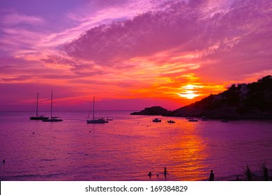Violet sunset