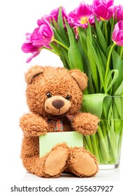 Violet tulips in the vase and a teddy bear on white background